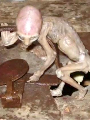 746741-dtstory-baby-alien