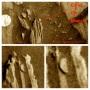 سکه بر روی مریخ, کشف شده در عکس ماهواره Roverناسا؟
